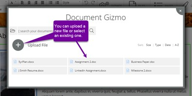 Document Selection Modal